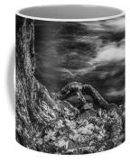 Fall Colors Stream Great Smoky Mountains Painted Bw Coffee Mug