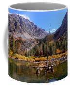 Fall Colours Reflection Coffee Mug
