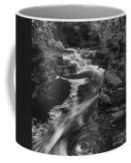 Fall Creek Flow II Coffee Mug