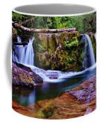 Fall Creek Oregon 3 Coffee Mug