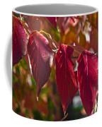 Fall Dogwood Leaves Coffee Mug