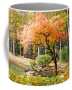 Fall Folage And Pond 2 Coffee Mug