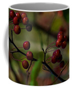 Fall Fruit Coffee Mug