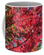 Fall In Illinois Coffee Mug