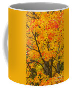 Fall In Pennsylvania Coffee Mug