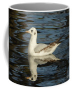 Fall In The Lake In Vienna No.2 Coffee Mug