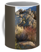 Fall In The Santa Rosas Coffee Mug by Scott Campbell