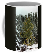 Fall Into Winter Coffee Mug
