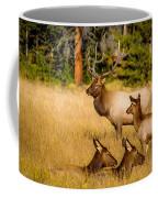 Fall Is Family Time Coffee Mug