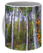 Fall Ivy In Pine Tree Forest Coffee Mug