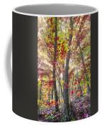 Fall Laser Beams Coffee Mug