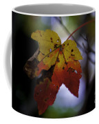 Red And Yellow Maple Leaf Coffee Mug