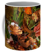 Fall Leaves 5 Coffee Mug