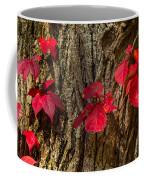 Fall Leaves Against Tree Trunk Coffee Mug