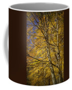 Fall Leaves And Trees In West Michigan No171 Coffee Mug