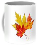 Fall Maple Leaves On White Coffee Mug