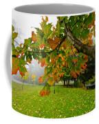 Fall Maple Tree In Foggy Park Coffee Mug