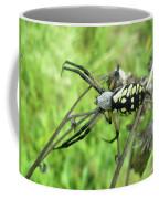 Fall Meadow Spider - Argiope Aurantia Coffee Mug