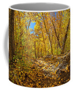 Fall On The Forest Floor Coffee Mug