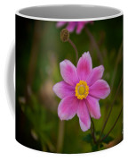 Fall Pink Daisy Coffee Mug