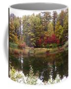 Fall Reflection And Colors Coffee Mug