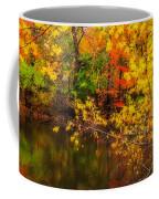 Fall Reflection Coffee Mug by Robert Mitchell