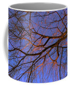 Fall Reflections By Diana Sainz Coffee Mug
