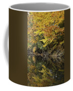 Fall Reflections Coffee Mug