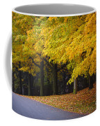 Fall Road And Trees Coffee Mug