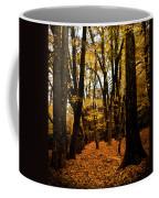 Fall Scene In Bidwell Park Coffee Mug