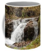 Fall Time Waterfalls Coffee Mug