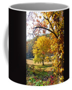Fall Trees 4 Of Wnc Coffee Mug
