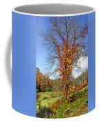 Fall Trees 5 Of Wnc Coffee Mug