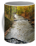 Fall Waters Coffee Mug