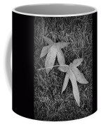 Fallen Autumn Leaves In The Grass During Morning Frost Coffee Mug