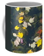 Fallen Leaves 2 Coffee Mug