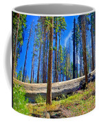 Fallen Sequoia In Mariposa Grove In Yosemite National Park-california Coffee Mug