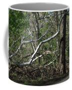 Fallen Sycamore Coffee Mug