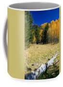 Falling In Flagstaff Coffee Mug