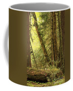 Falling Trees In The Rainforest Coffee Mug
