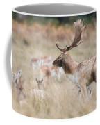 Fallow Deer Buck Coffee Mug