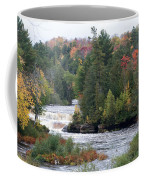 Falls And Color Coffee Mug