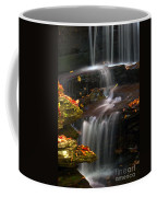 Falls And Fall Leaves Coffee Mug