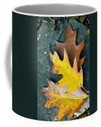 Falls Carpet Coffee Mug