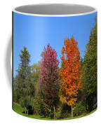 Falls Colours Coffee Mug