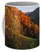 Fall's Mountainside Cascade Coffee Mug