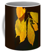 Fall's Purest Gold Coffee Mug