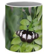 False Diadem Butterfly Coffee Mug