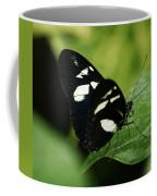 False Zebra Longwing Butterfly Coffee Mug