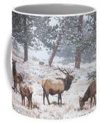 Family Man Coffee Mug